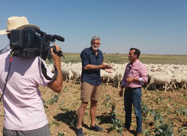 Reportaje Dehesa de Los Llanos